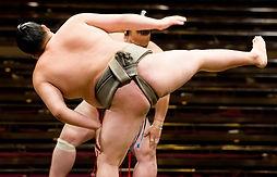 相撲 股割 写真2.jpg