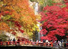 Cycling Tour Osaka Autumn Leaves Mino Waterfall Wheelchair Accessible Travel Osaka