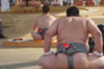 大相撲見学ツアー 相撲部屋見学ツアー 相撲体験ツアー 大阪 神戸 京都 西宮 尼崎