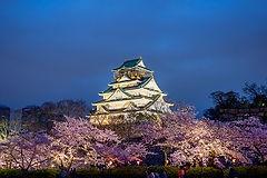 Osaka Castle wheelchair travel Osaka