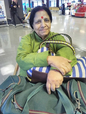 wheelchair accessible tour customers from indian