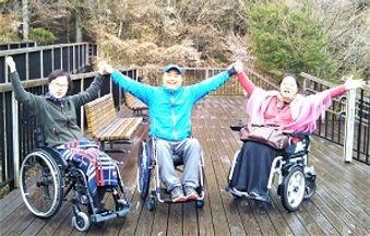 wheelchair accessible tour Mt. Fuji