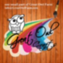 Great Owl Crafts square-rainbow.png