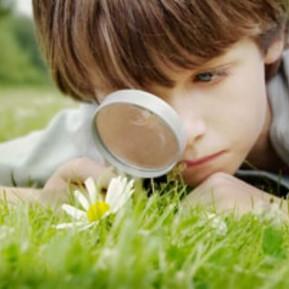 Enseña a tu niño la importancia de observar.
