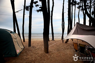 캠핑을 즐기며 여유롭게 돌아보는 태안_몽산포캠핑장.jpg