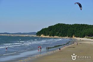 해송숲에서 즐기는 캠핑여행_춘장대해수욕장.jpg
