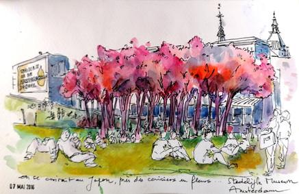 Parc aux cerisiers