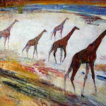 Migrations de girafes