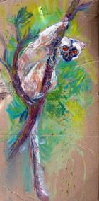 Maki peinture.JPG