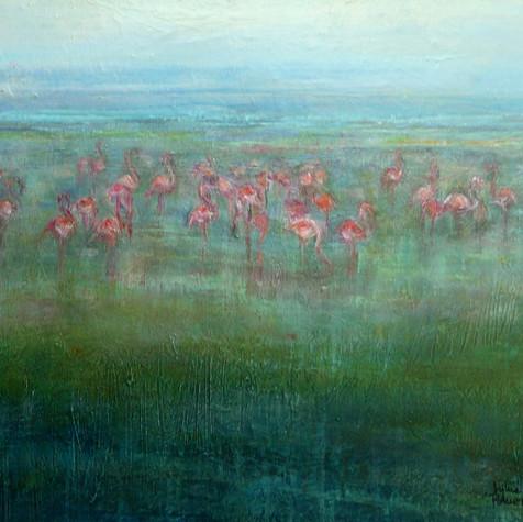 Les flamants roses