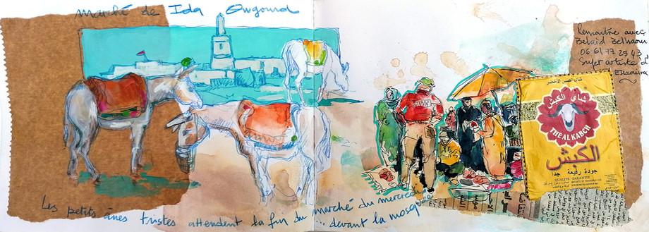 Les ânes d'Ida Ougourd