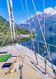 A Beautiful morning view of Geiranger