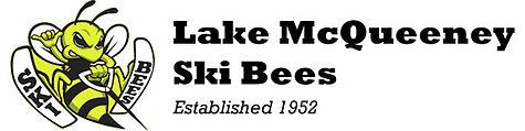 Ski Bee Header.jpg