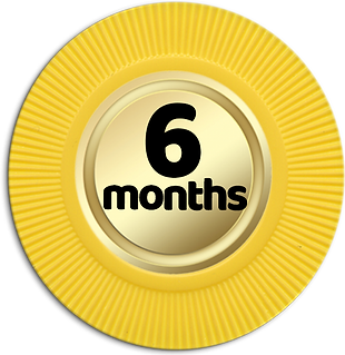 6-Months.png
