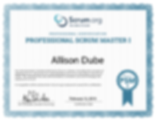 Professioal Scrum Master I certification from Scrum.org
