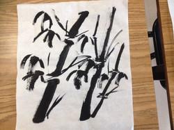 竹子 Bamboo