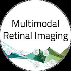 Multimodal retinal Imaging Logo.png