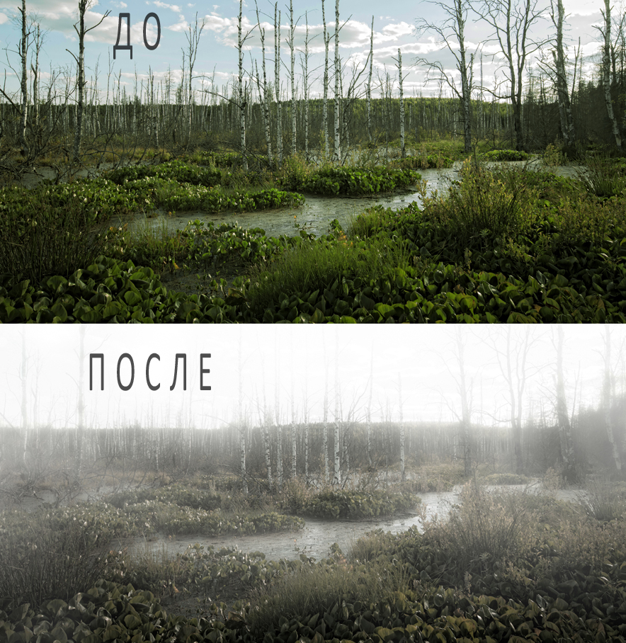 ДО_ПОСЛЕ12