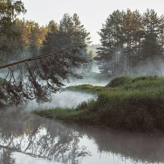 """Двухдневный фототур """"Рассветы в сосновом лесу у реки на песчаных дюнах"""""""