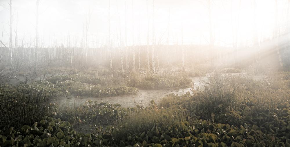 туман-бобровое-после