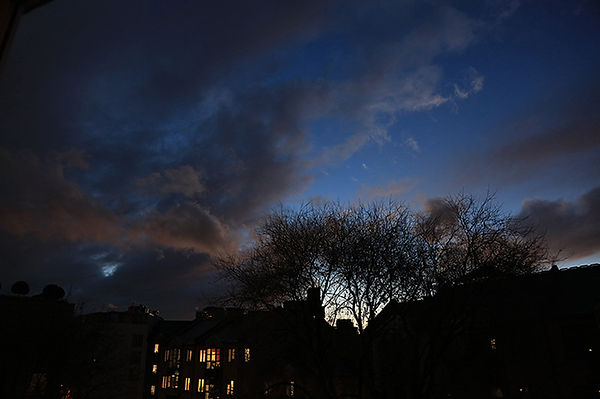 The sky at dusk with silhouetted trees and buildings in the foreground.