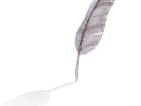 this feather