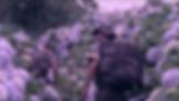 Screen Shot 2018-10-03 at 18.47.21.png
