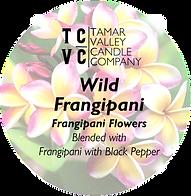 wild frangipani.png