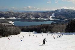 hakuba_sanosaka_japan,_skiers_8535