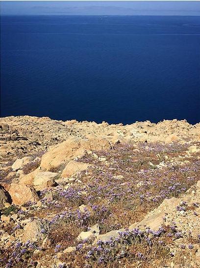mykonos mare.jpg