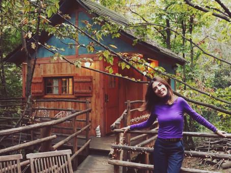 Una casa sull'albero vista autunno e piena d'amore.