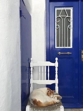 mykonos gatto porta.jpg