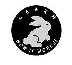 Rabbit Learn how it works_InPixio.png