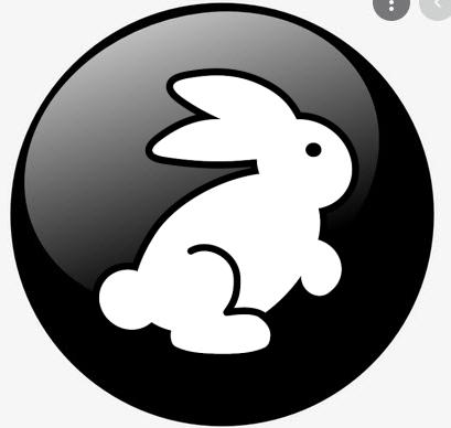 black button rabbit_InPixio.png
