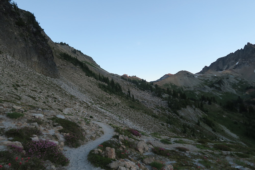 A narrow sandy trail winds around the side of a rocky mountain with patches of wildflowers.