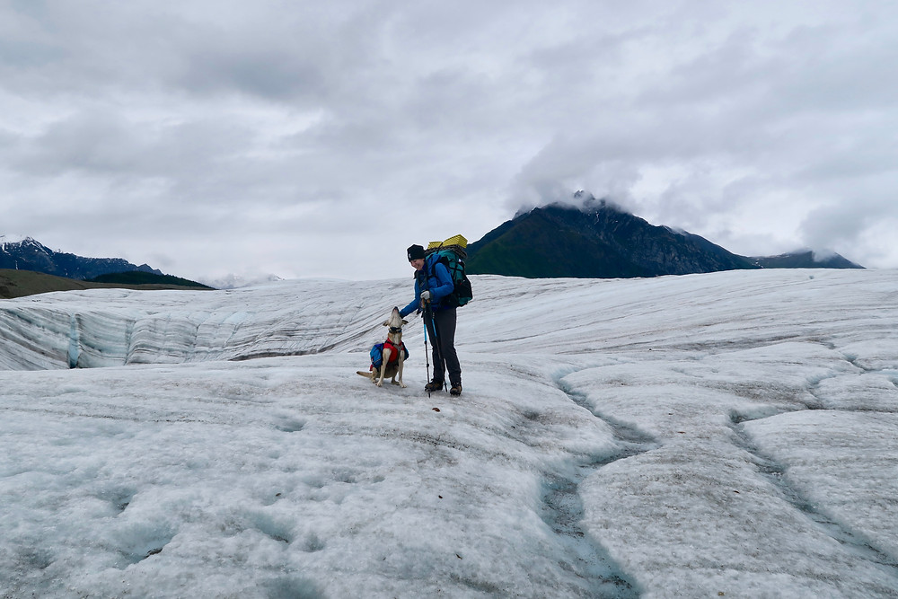 A white woman wearing a backpack and warm clothes stands on a blue striated glacier scratching the ears of a medium-sized blond dog sitting at her feet wearing a pack. A cloudy sky is overhead and a dark blue/green mountain peak in the distance.