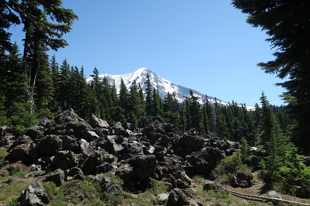 Jumbles of dark volcanic boulders cover the hill in the foreground, with pines lined up in the mid-distance, and an icy mountain peak hovering in the background.