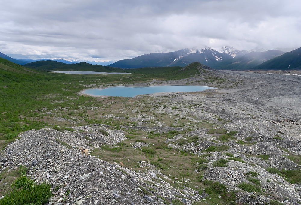 A small dog looks back at the camera from a rocky ridge, two small blue lakes in the mid-distance, and dark mountains in the far distance. Low-hanging gray clouds overhead.