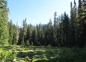 Pacific Crest Trail, Washington (Day 2, August 2016)