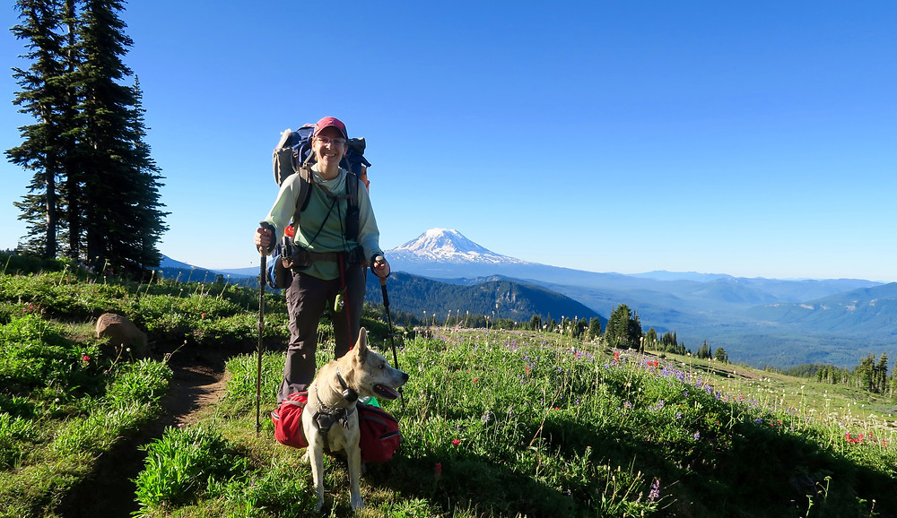 A woman wearing a large blue pack and carrying hiking poles grins at the camera. Her dog sits at her feet wearing a bulging red pack and looking off to the side. A snowy mountain top is in the distance.