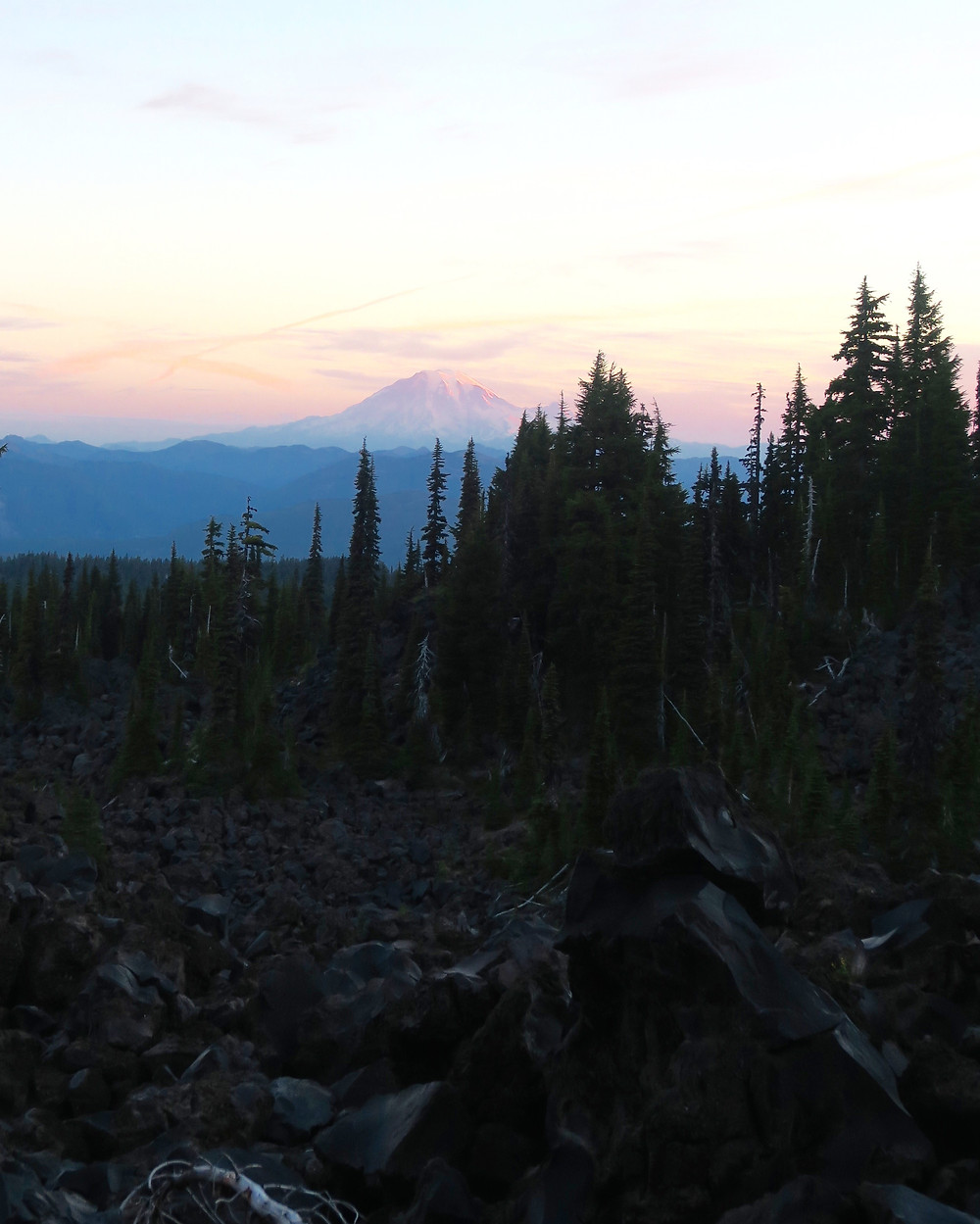 A pastel pink glow edges the horizon with a large but distant snowy mountain, the foreground is covered in dark jagged rocks edged by a row of pine trees
