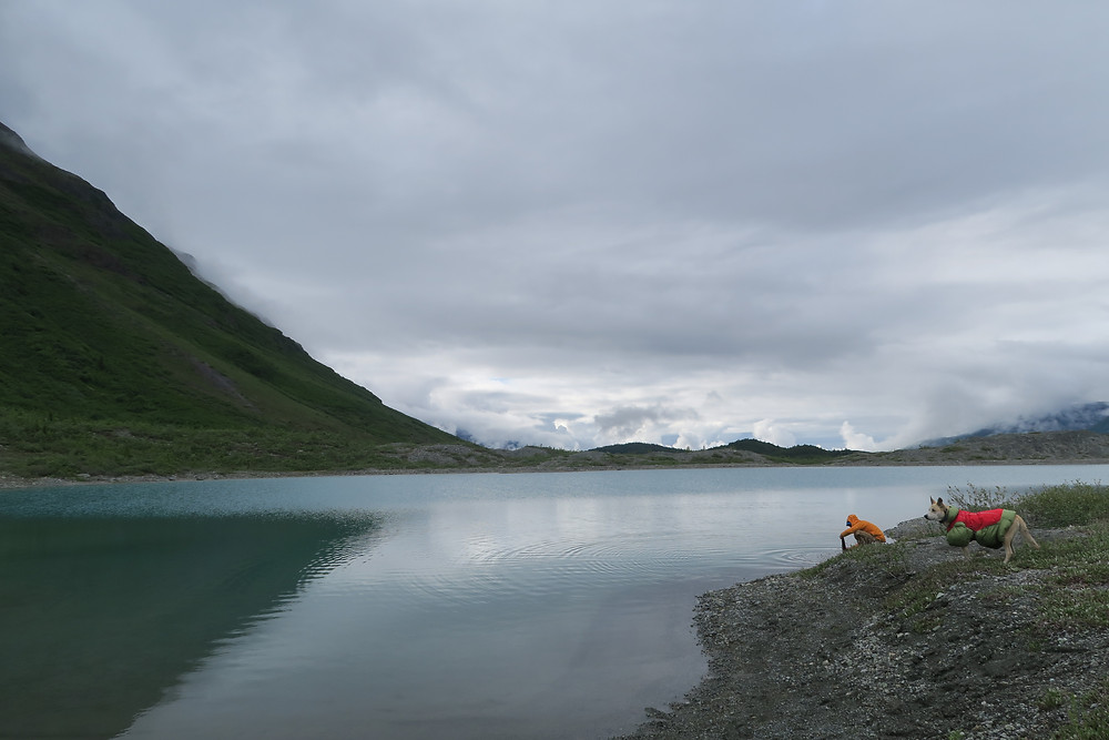 A dog in a red and green coat watches from a small hill as a man wearing an orange shirt gets water from a blue-green lake. Thick gray clouds overhead.