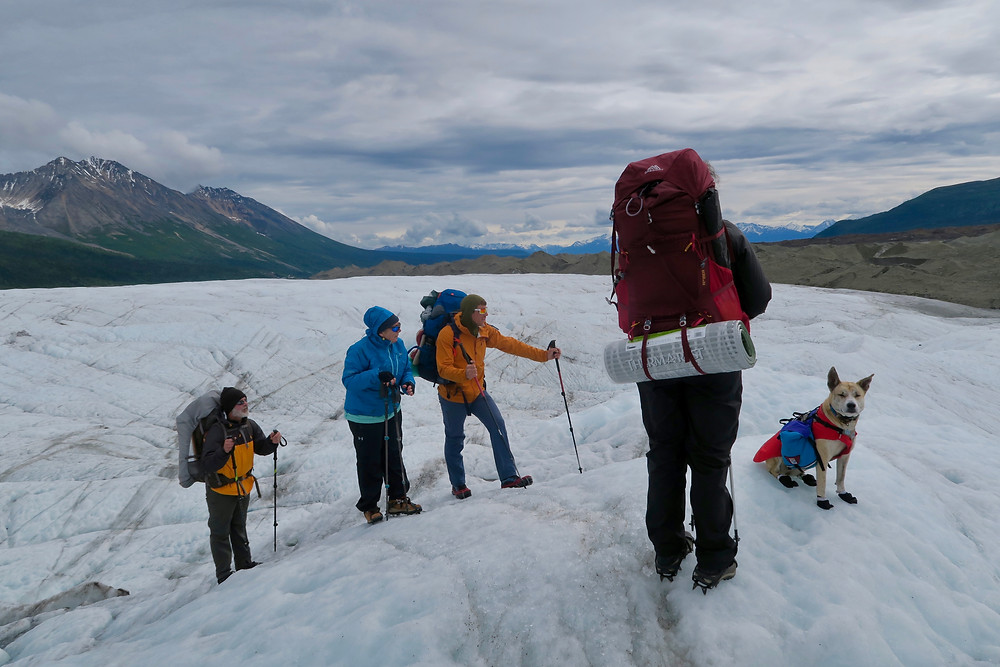 Four people wearing packs and a dog stand on an icy glacier slope with mountains in the background.