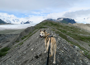 Glacier Trek to Donoho Lakes: Day 3, June 18, 2019