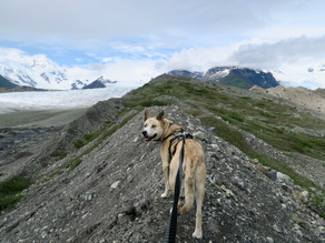 Glacier Trek to Donoho Lakes: Day 3, June 18, 2019