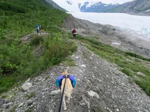 Donoho Lakes Glacier Trek: Day 2, June 17, 2019
