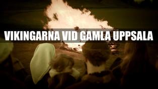 Vikingarna vid Gamla Uppsala