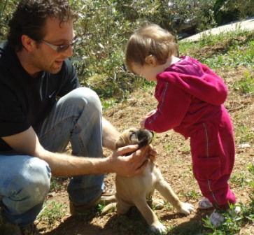 come crescere cucciolo cane corso