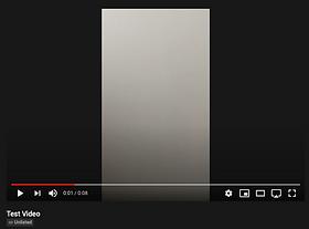 Screen Shot 2021-02-03 at 9.08.47 PM.png