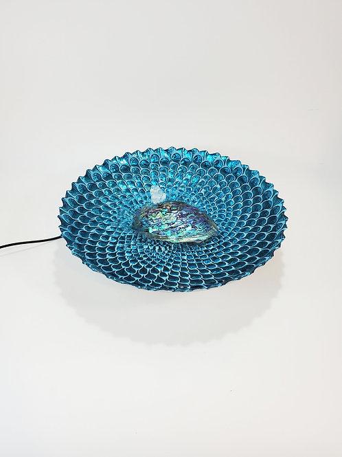 Peacock Ocean
